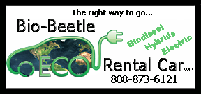 Maui Car rental Logo